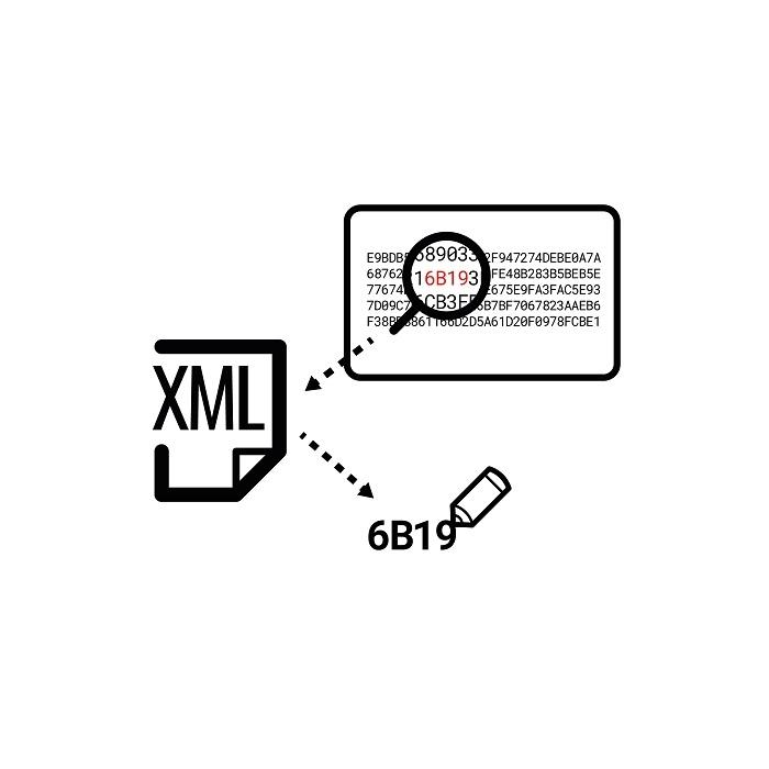 XML Funktion